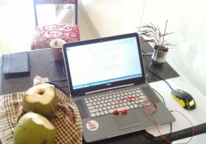 кокос и компьютер